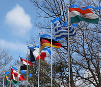 Photo of Bluecoup ribbons atop flagpoles from many nations.